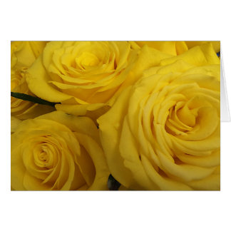 Snuggling Yellow Roses Card