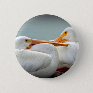 Snuggly Pelicans Button