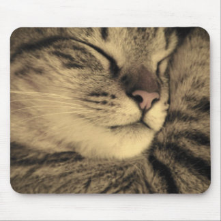 Snuggly Tabby Cat Mousepad - Kitten Approved