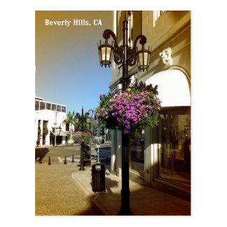 So Beautiful Beverly Hills Postcard! Postcard