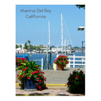 So Beautiful Marina Del Rey Postcard! Postcard
