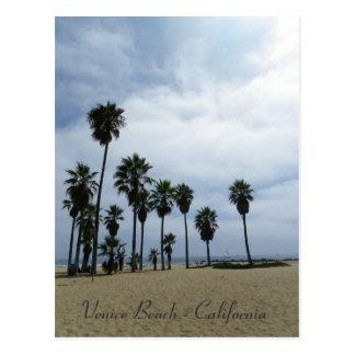 So Beautiful Venice Beach Postcard! Postcard