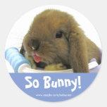 So Bunny! Sticker - Blue