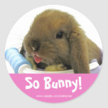 So Bunny! Sticker - Pink