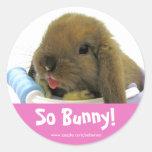 So Bunny! Sticker - Pink