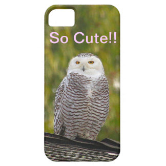 So Cute Snow Owl iPhone SE/5/5s Case