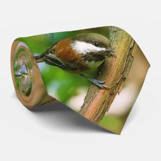 So Cute, So Curious: A Chestnut-Backed Chickadee Tie