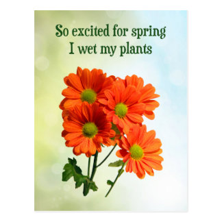 So excited for spring I wet my plants Postcard