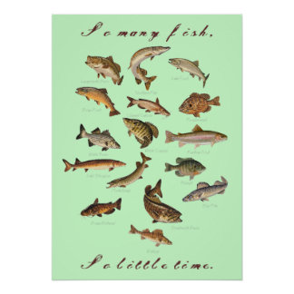 So Many Fish, So Little Time Poster