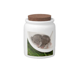 So Sleepy Baby Mice Candy Jar