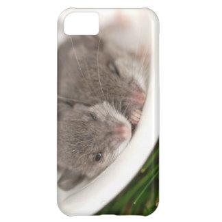 So Sleepy Baby Mice iPhone 5C Cases