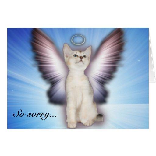So sorry - Cat ...