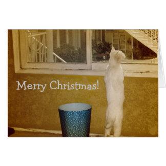 So Sweet Christmas Card! Card