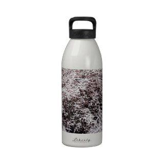 So this is Christmas Reusable Water Bottle