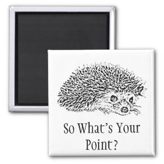 So What's Your Point? Magnet