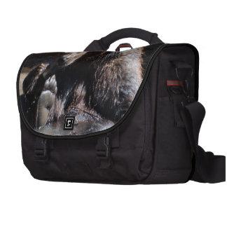 Soaking Bear Laptop Messenger Bag