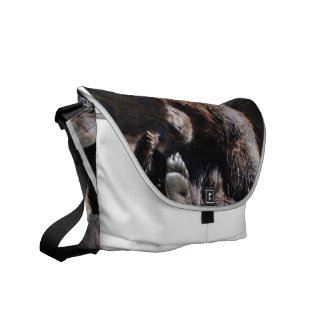 Soaking Bear Courier Bags