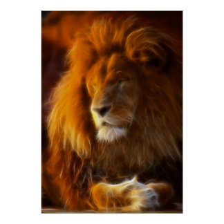 Soaking Up the Sun, King of the Jungle Lion II Poster