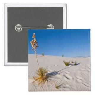 Soaptree Yucca, long Shadow, Transverse Dunes Button