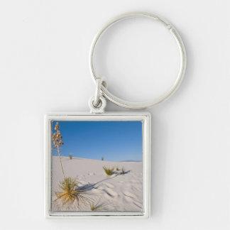 Soaptree Yucca, long Shadow, Transverse Dunes Keychain