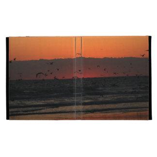 Soar Birds iPad Folio Cases