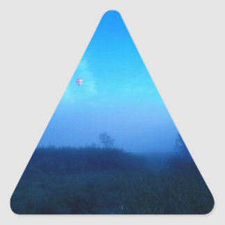 #SOAR to new heights Triangle Stickers