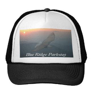 Soarer Trucker Hat