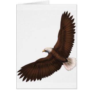 Soaring Bald Eagle Card
