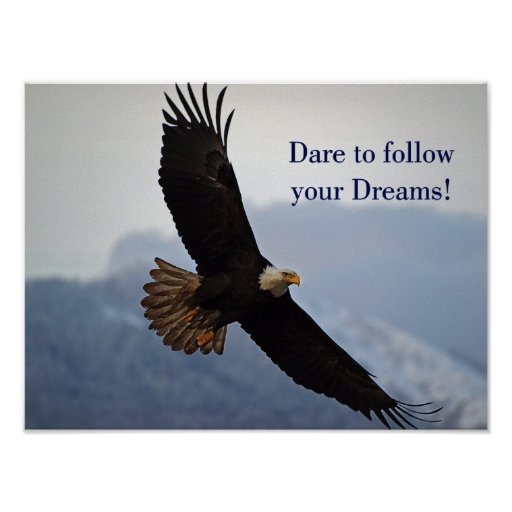 quotes about eagles soaring quotesgram