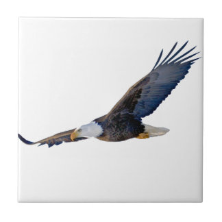 Soaring Bald Eagle Tile