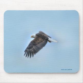 Soaring Bald Eagle Wildife Photo 4 Mousepads