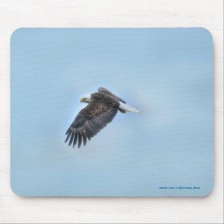 Soaring Bald Eagle Wildife Photo 4 Mouse Pads