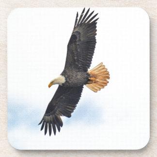 Soaring Bald Eagle Wildife Photo Art Coaster