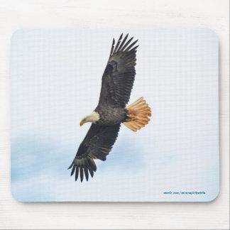 Soaring Bald Eagle Wildife Photo Art Mousepad