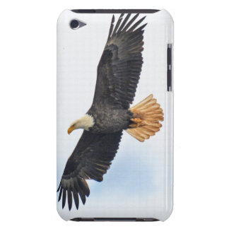 Soaring Bald Eagle Wildlife Photo Art iPod Touch Case-Mate Case