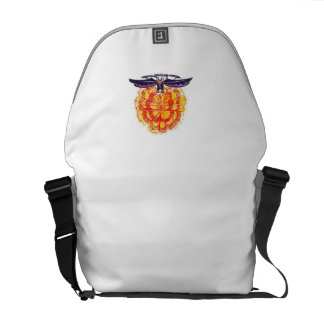 Soaring Eagle over the Sun Messenger Bag