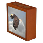 SOARING EAGLE Pencil/Pen HOLDER
