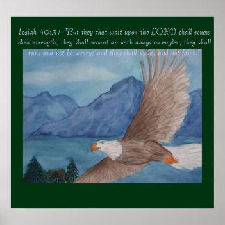 Soaring eagle poster