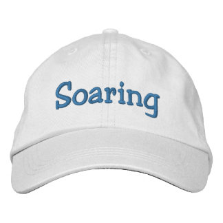 Soaring Embroidered Hat