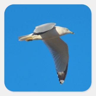 Soaring Flight Square Sticker