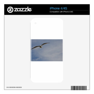Soaring Glider Decals For The iPhone 4