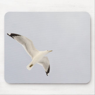Soaring Gull Mouse Pad