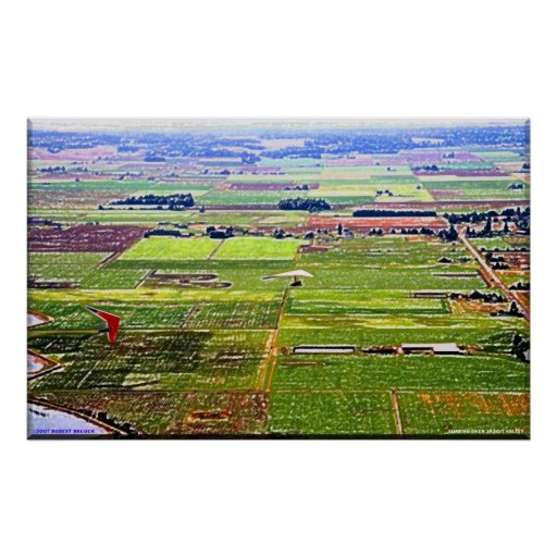 Soaring over Skagit Valley Poster