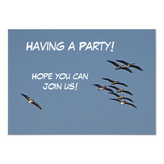 Soaring Pelicans in Flight Card
