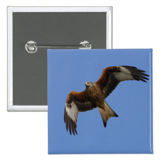 Soaring Red Kite Button