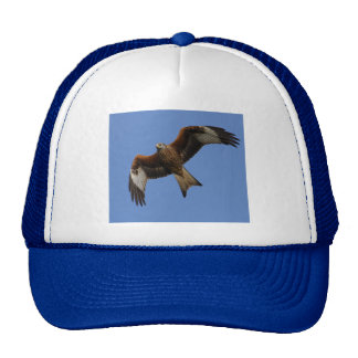 Soaring Red Kite Trucker Hat