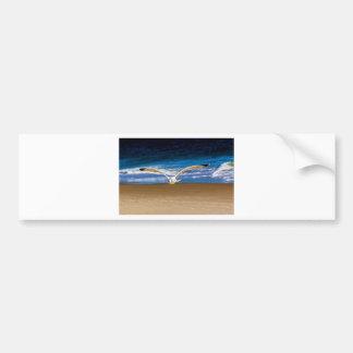 Soaring Seagull Bumper Sticker