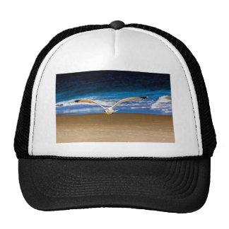 Soaring Seagull Trucker Hat