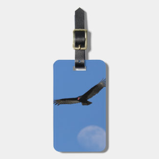 Soaring with Luna Luggage Tags