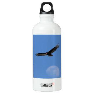 Soaring with Luna SIGG Traveler 0.6L Water Bottle